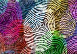 Bunter Fingerprint